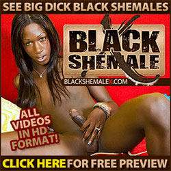 Free Shemale List 23