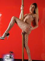 TS Jonelle pole dancing in body stockings