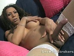 Busty brown tranny with massive shemale rod