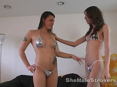 Slim shemales suck each other