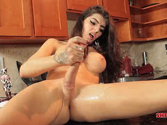 Shemale pornstar Vixxen Goddess gets naughty in the kitchen