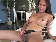 Pretty ladyboy touching her hard rod