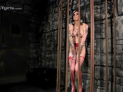 Dungeon pet Chelsea toys and pees