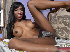 Ebony shemale pornstar Natassia spreads and strokes
