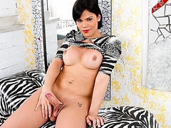 Hot Shemale Danielly Colucci Jerks Off And Cums