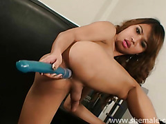 Asian ladyboy with big lips strokes her cock
