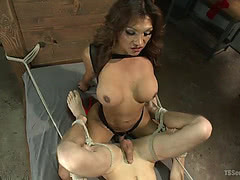 TS Jessy Dubai fucks tied up guy in the dungeon