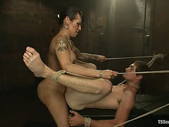 TS Foxxy dominate tied up guy