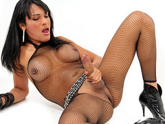 Hung shemale Jo Garcia Striptease