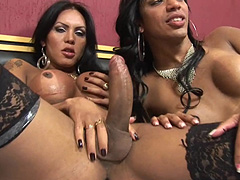 Horny latina trannies in wild orgy