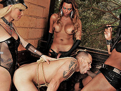 Three shemale dommes gangbang a slave