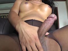 Ladyboy in pantyhose jerks off