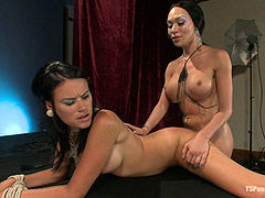 Big cock Mia Isabella fucks tied girl
