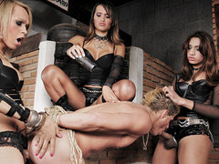 Dominatrix shemales pleasure and punish their slave