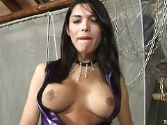Tgirl in purple latex looks for a cock to gobble